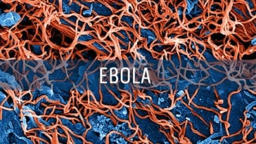Ebola Virus Medical Countermeasures