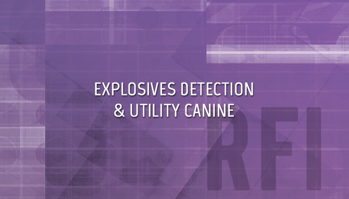 Explosives Detection & Utility Canine