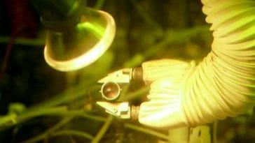 Plutonium 238 Production