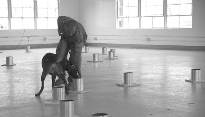 NORT Canine Explosives Testing