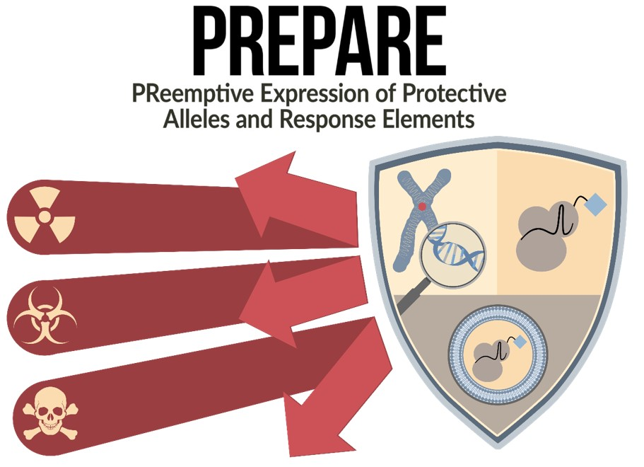 PREPARE: PReemptive Expression of Protective Alleles and Response Elements